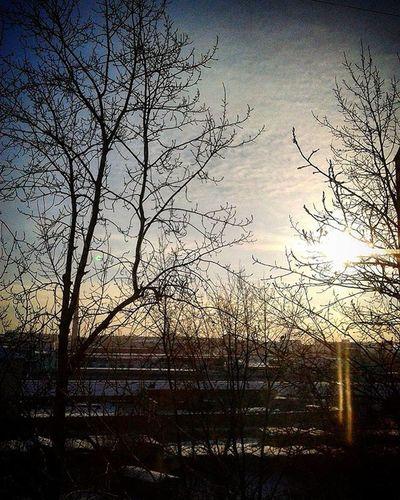 омск сибирь Морозисолнце деньчудесный декабрь зима Omsk Siberia Frostandsun Winter Desember