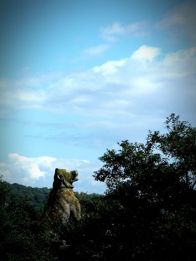 Howling At The Sky Statue Finding Inspiration Landscape