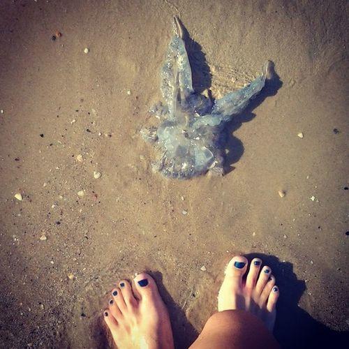 все море в медузах 25 Days Of Summer