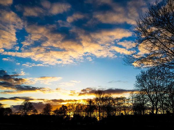 EyeEm Best Shots EyeEm Nature Lover Eyeeem Gallery Tree Pixelated Sunset Silhouette Sky Cloud - Sky Sky Only Meteorology Cumulus Cumulonimbus Moody Sky Dramatic Sky Cloudscape Wispy Tranquil Scene Romantic Sky Calm Idyllic Atmospheric Mood Stratosphere