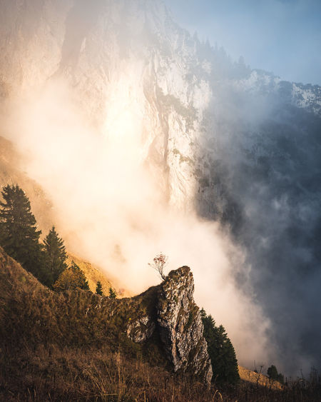 The Lonely Tree Beauty In Nature Scenics - Nature Mountain Sky Cloud - Sky Tree Tranquility Tranquil Scene Plant Nature Non-urban Scene Environment Rock Day No People Land Sunlight Fog Outdoors Formation Mountain Peak Lonely Tree Alpstein Appenzell Switzerland