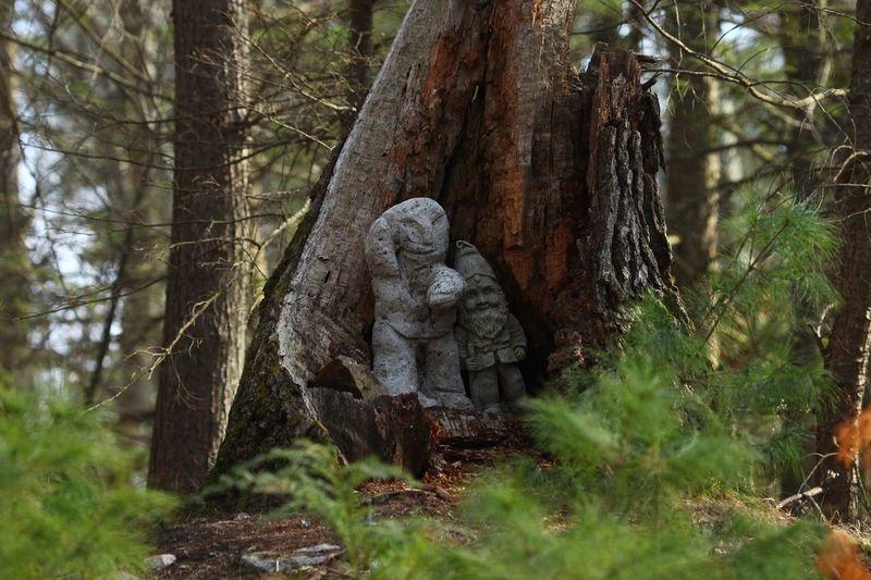 Dur Authalar Tree Plant Art And Craft Sculpture Statue Representation Human Representation