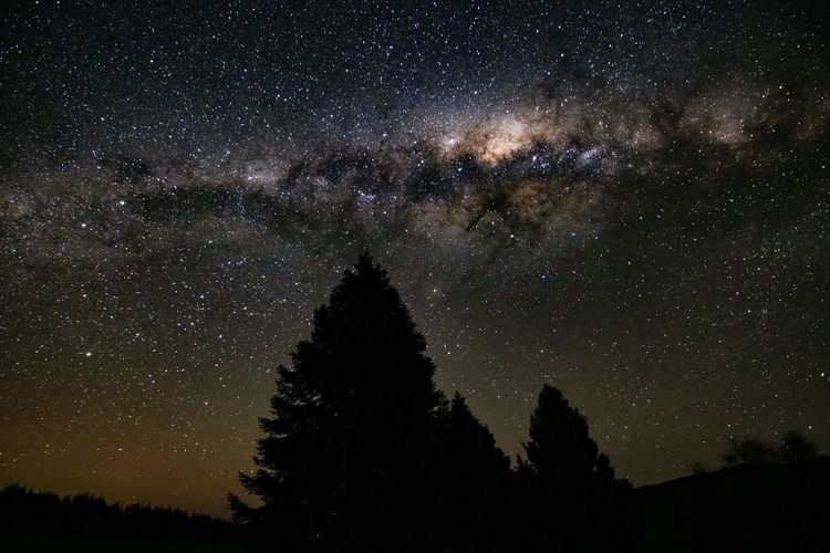 Astronomy Beauty In Nature Galaxy Infinity Low Angle View Milky Way Nature Night No People Plant Scenics - Nature Silhouette Sky Space Space And Astronomy Star Star - Space Star Field Tranquil Scene Tranquility Tree