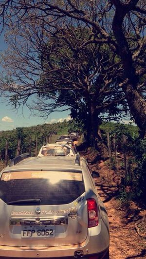@Brandiluis 4x4 Dusters Beautyful Day Off Road Brazil