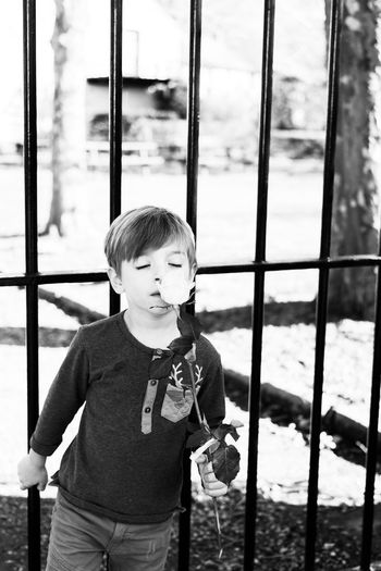 Boy standing by window