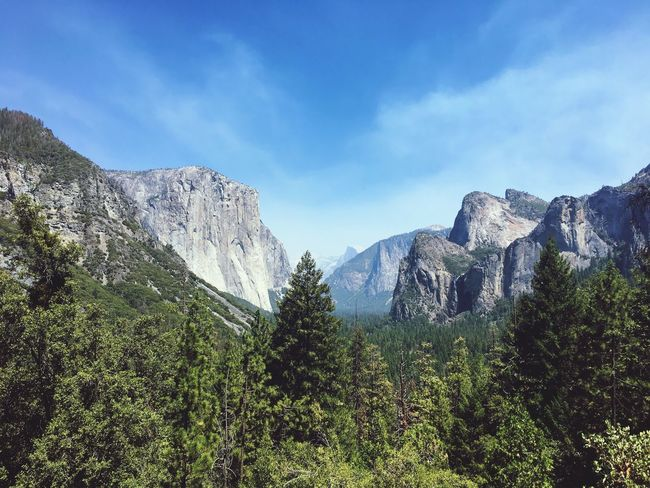 El Capitan, Yosemite Blue Skys El Capitan Tunnel View Travel Destinations USA Yosemite Yosemite National Park Tranquility Mountain Range Forest Landscape Day No People Outdoors Adventure