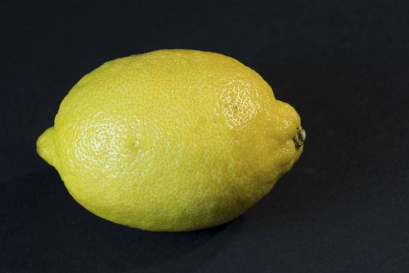 Friut Friut Art Friuts Fruit Fruitporn Fruits Lemon Limon Limone Obst Zitrone Zitronen Zitronenscheibe Zitrusfrüchte
