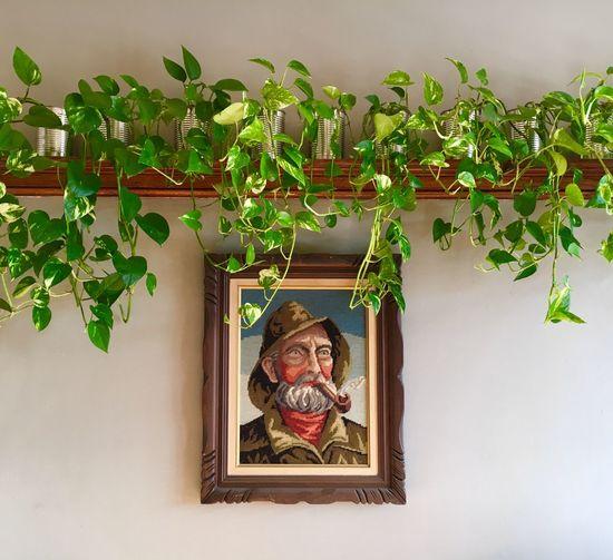 Plants + Sailor