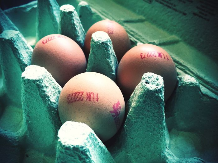 Eggs in an egg box. Freshness Fresh Ingredients Ingredient Egg Box Egg Food Food And Drink Holiday Close-up Indoors  Easter Egg Egg Carton Healthy Eating Still Life Freshness Wellbeing