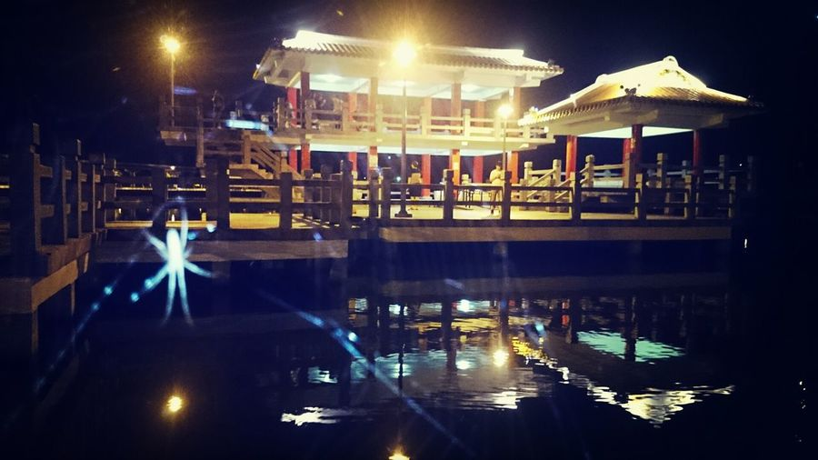 Taipei City 大湖公園 Night Spider