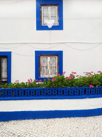 White and blue painted house in town