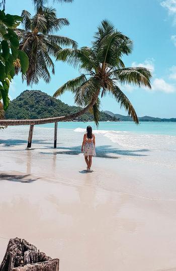 Woman from behind, summer dress, tropical beach,