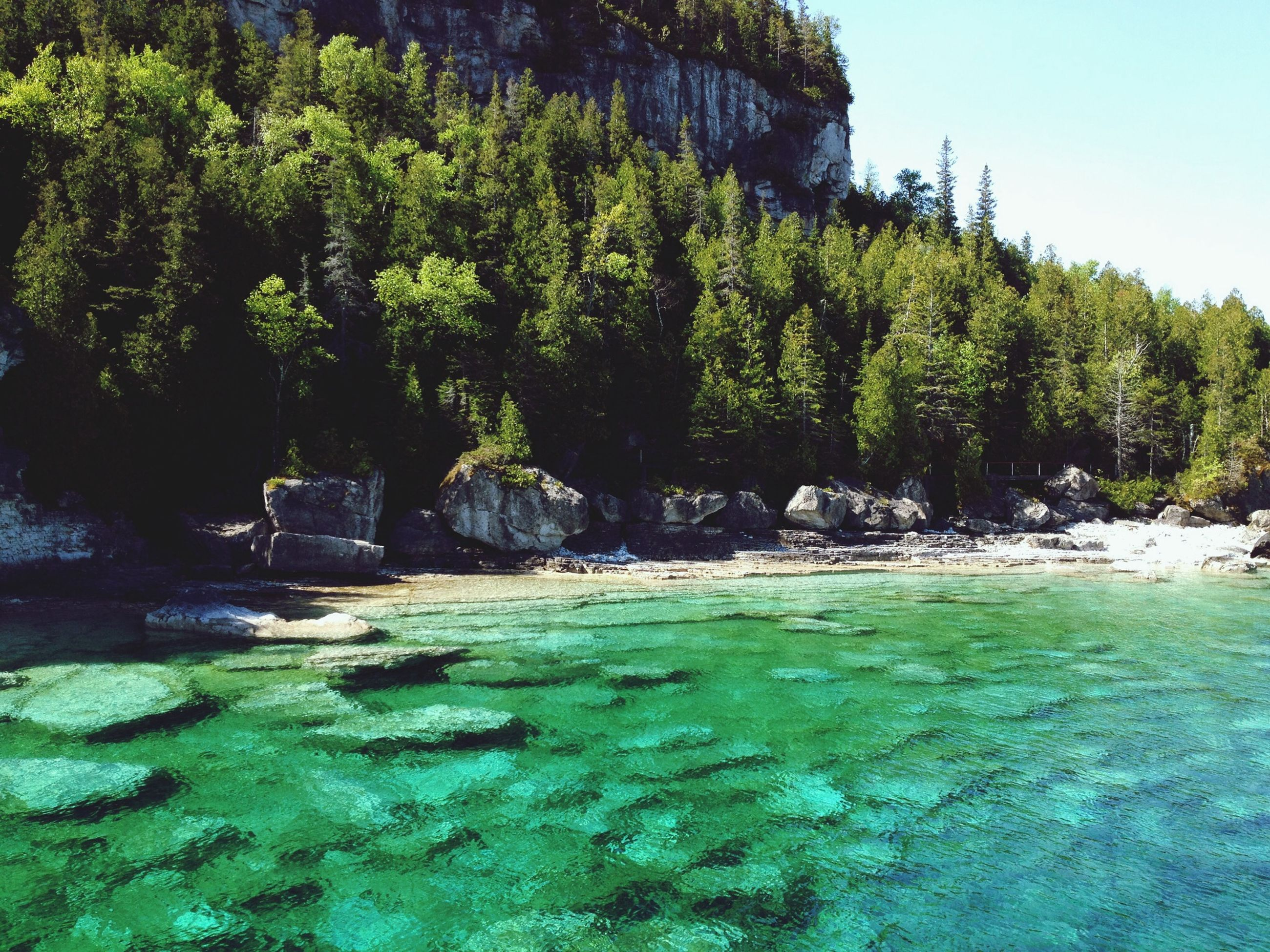 water, tree, tranquility, tranquil scene, green color, scenics, beauty in nature, nature, growth, beach, idyllic, sea, sunlight, day, rock - object, clear sky, plant, grass, outdoors, green