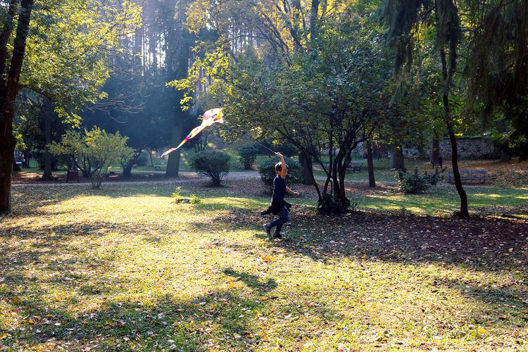 Full length of man in park during autumn