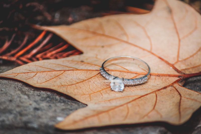 Close-up of engagement ring on dry maple leaf
