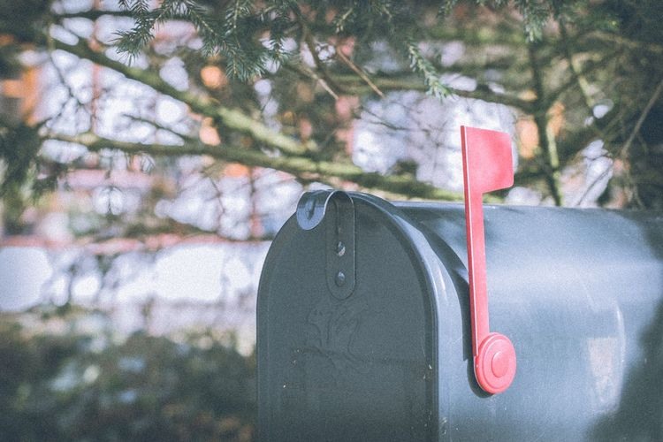 Close-up of mailbox against trees