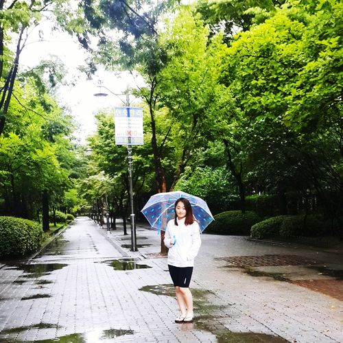 Rainy Days South Korea Ilsan  Walking Taking Photos That's Me Summer Traveling How's The Weather Today? 😆📷🌂☔💧☁🌸🌹