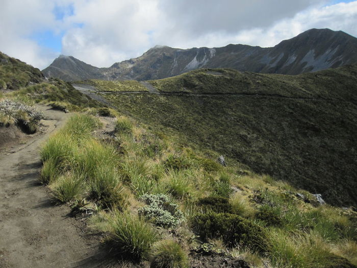 Mountain Landscape Environment Sky Scenics - Nature Nature Plant Day Cloud - Sky Beauty In Nature No People Wilderness Scenery Land Grass Outdoors Sight Mountain Range Growth Travel Mountain Peak Semi-arid New Zealand Kepler Track