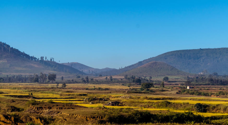 Amazing Landscape captured with Nikon D3300 #hills Landscape Sky Environment Scenics - Nature Tranquil Scene Tranquility Nature Clear Sky Land Copy Space Beauty In Nature Mountain Field No People Plant Blue Rural Scene Day Non-urban Scene Agriculture Outdoors
