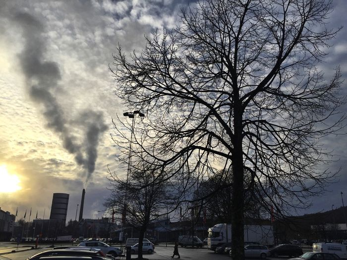 Clouds Tree Cloudandtree Chimney Skyhigh Clouds And Sky Sky And Clouds Skylover Sky And Trees Cloudysky Cloudshapes Behindthat Cloud_collection  Waiting ... Cloudandsun Sunincorner
