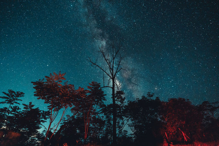 Milky way and night stars in the fields mood tone