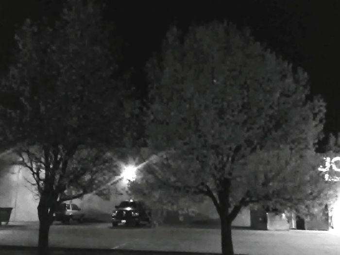 Tree Night Car Transportation Mode Of Transport Dark Illuminated No People Outdoors Nature