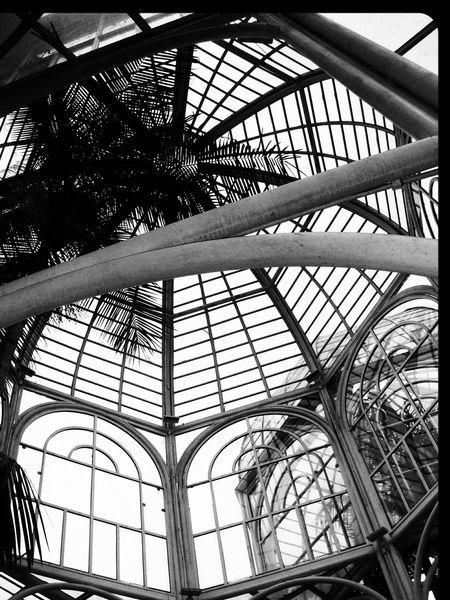 No People Outdoors Travel Destinations Bosque Tree Travel Built Structure Architecture Day Cloud - Sky Jardim Botânico Rj Jardim Botanico Flower Monument Curitiba, Brazil Jardim Botanico De Curitiba Black And White Friday
