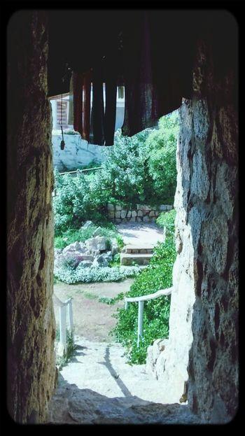 La entrada de piedra
