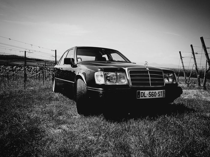Starline One - MB old car love Car Outdoors Nature Car No People Day Outdoors Grass Nature