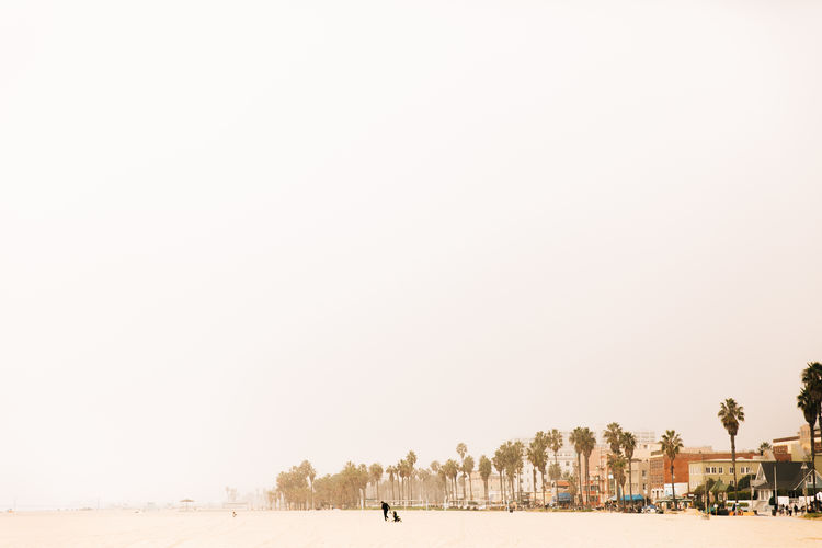 Walking on the beach in California Minimalism Minimal Copy Space Land Group Of People Outdoors Scenics - Nature Beauty In Nature Sand Sky Nature Incidental People Beach Beauty In Nature Santa Monica California California Dreamin Tiny People In Big Places