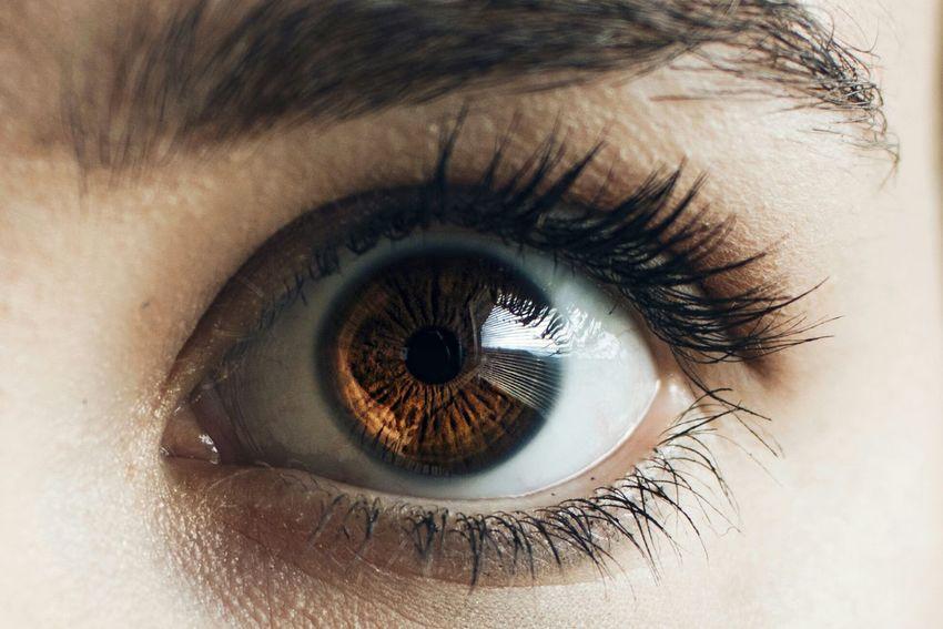 EyeEm Selects Human Eye Eyelash Human Body Part Macro Eyesight Iris - Eye Looking At Camera Close-up Eyeball Full Frame Eye One Person Adult People One Woman Only Beautiful Woman Only Women Portrait Sensory Perception Beauty