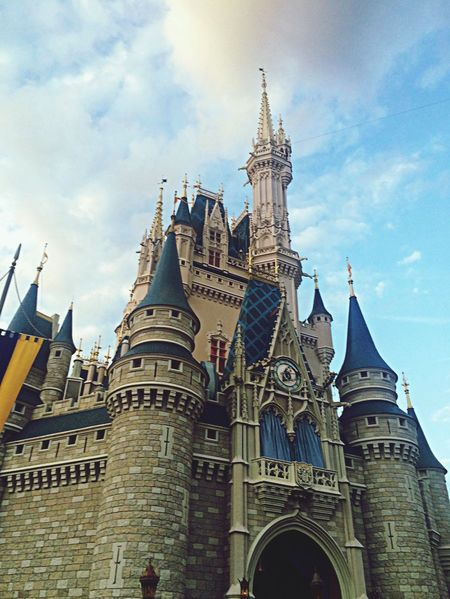 Gnarly views at DisneyWorld