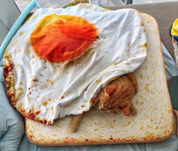 Cat Sleeping On Bread Pattern Mattress