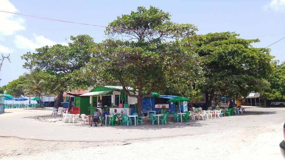 Local Market Beach Life La Romana Dominican Republic Tourism Trip Caribbean Tropical Paradise Nature And People Island Life Tropical Lifestyle Lifestyle Photography Check This Out Stockphotography Stockphoto Tropical Climate Island Culture