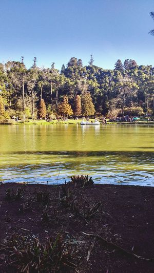 Water Reflection Lake No People Outdoors Day Nature Beauty In Nature Sky Rio Grande Do Sul  Lago Negro Rio Grande Do Sul  Brazil