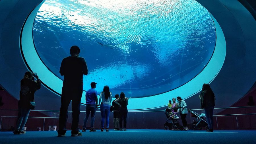 The oculus Exploration Sea Water Photography Photo Sonya7 Sonyalpha Sonyphotography South Florida Miami Florida Nature Beach Organic Architecture Live For The Story Frostmuseum Frost Musuem