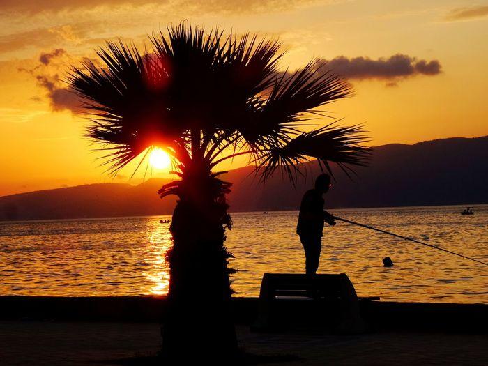 Sunset Gunbatimi Fishing Palms Clouds коджаели турция палмы солнце