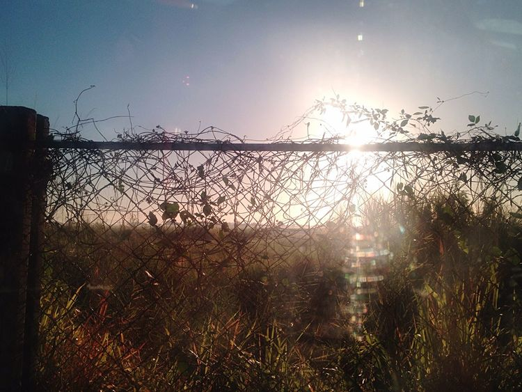 Travel Farm Countryside Sunset No People Outdoors Day Scenics Vacation Going North Ilocos Fence