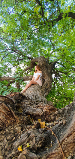 Low angle view of woman on tree trunk