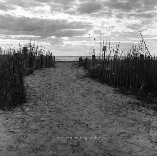 Beach Beachphotography Beautiful Nature Black And White Blackandwhite Photography Don't Be Square Kodak D25 Mediumformat Outdoors Rolleiflex Square Ultrafine Extreme 400