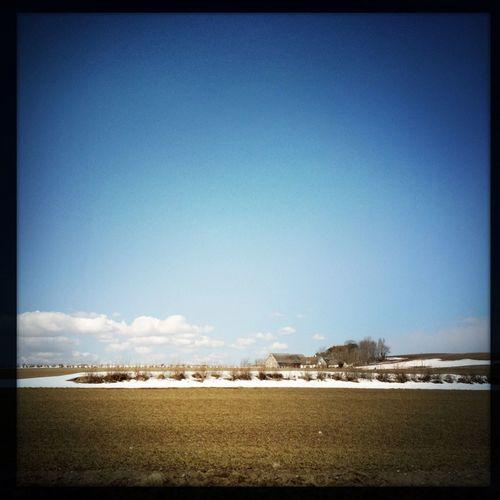 Landscape Spring? NEM Landscapes