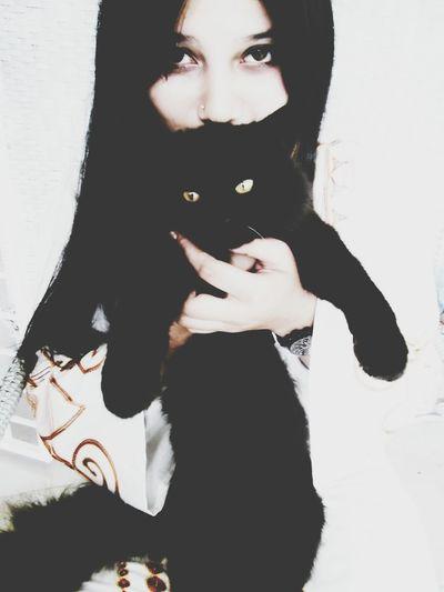 Catswag.(;