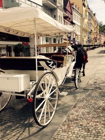 Carriage Streetphotography Taking Photos Mood Street Carriage Ride Karlovy Vary Karlsbad Town Buildings Before The Ride Carriages  The Street Photographer - 2016 EyeEm Awards Vintage Style My Car Carriage And Horses No People Travel Destinations Travel Historical Center Enjoyment Day Building Exterior Old Buildings