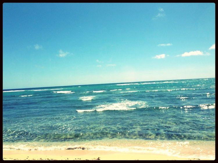 友達か、もらったハワイの写真なんだけどね