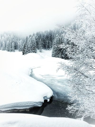 Cold landscapes, but yet so beautiful... Peace Snow Just White Landscape_Collection Nature Beauty In Nature No People Sky Outdoors Frozen Tranquility
