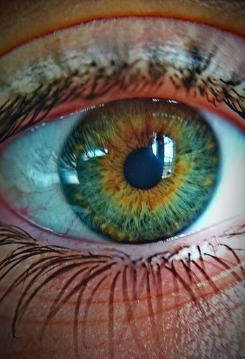 Human Eye Looking At Camera Real People Vision People Iris - Eye Photo Popular Photo Instagran Photographer EyeEm Gallery Followme Eyem4phptography Popular Photographs Eyeemphoto Eyem Gallery