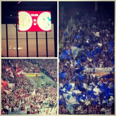 Sind ja wenigstens fast die richtigen Farben 🙈 Bundesliga FSVMainz05 Schalke04 SUPPORT