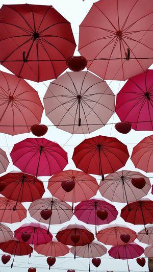 umbrellas in