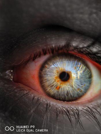 Human Eye Eyelash Human Body Part Iris - Eye Eyesight People Eyeball Close-up Macro One Person Adults Only Sensory Perception Adult Real People One Woman Only Eyebrow Only Women Outdoors Day