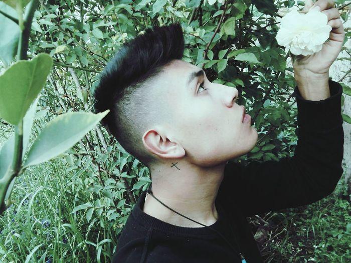 Rosas <3 Summer ☀